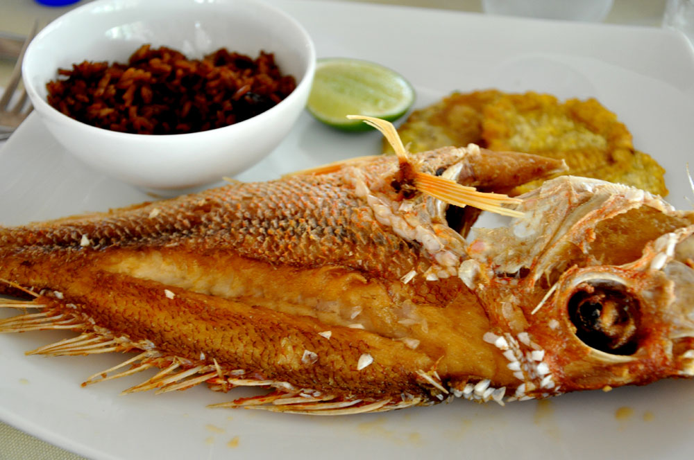 Fresh fish on Islas del Rosario