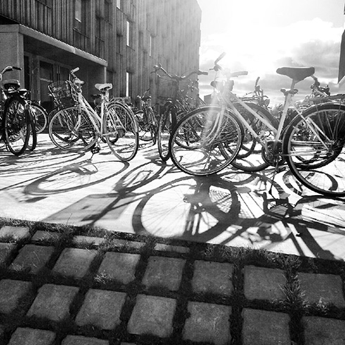 Bikes at Umeå Arts Campus