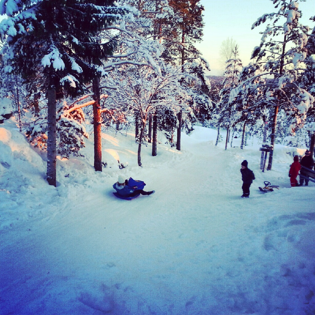 Sledding in Hamptjärnsstugan