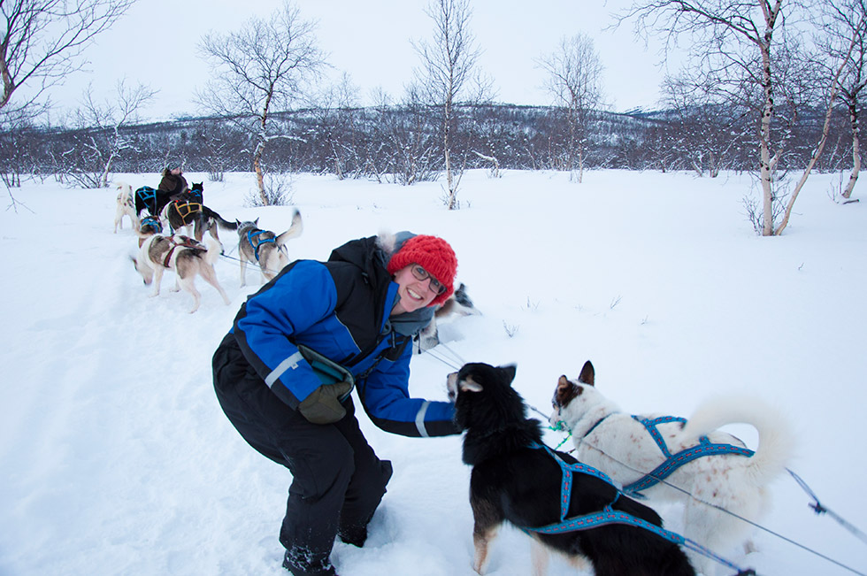 Abisko Dog Sledding - Taking a break