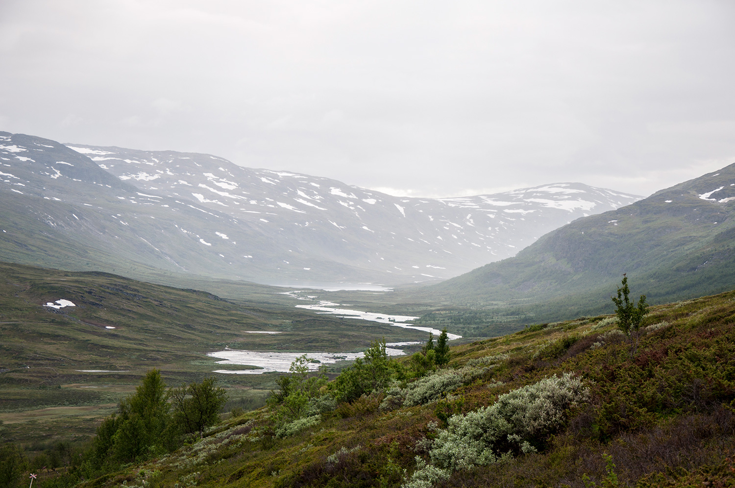 Valley while hiking in Abisko