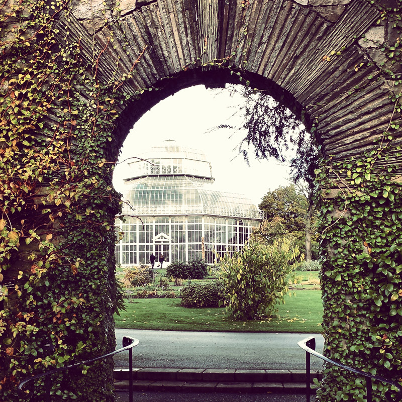 National Botanic Gardens in Dublin